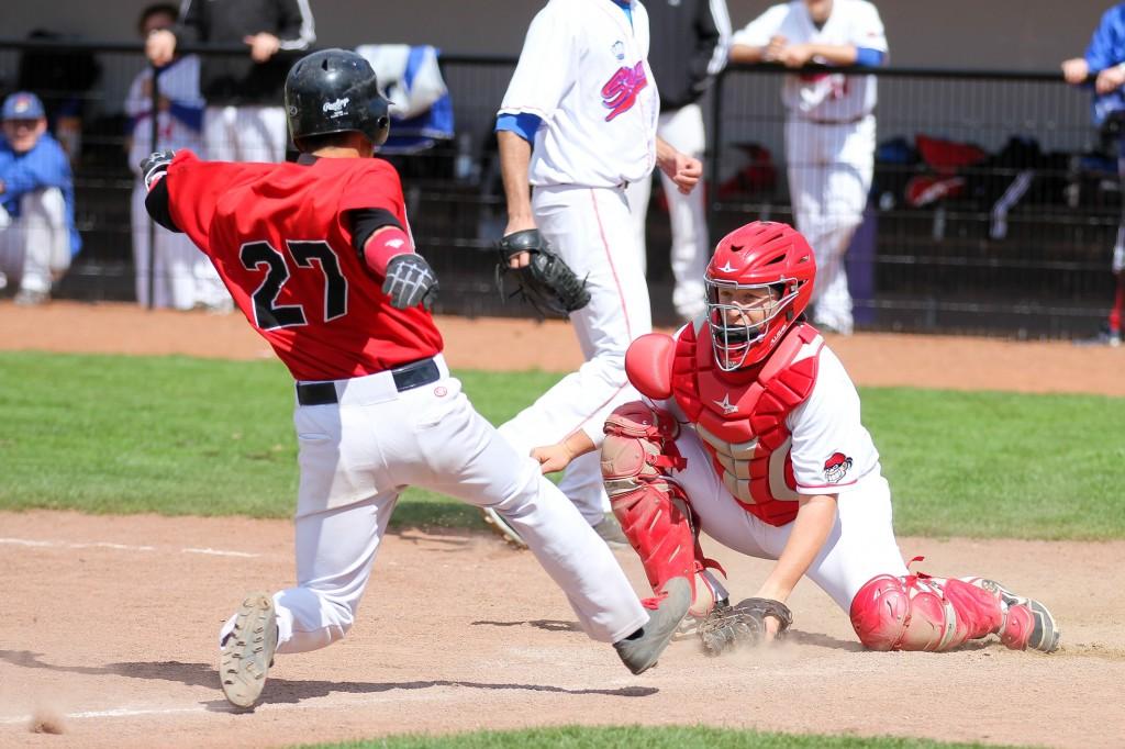 Baseball-bundesliga