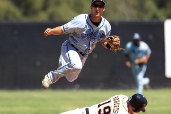 Jacob Younis kommt von den Sydney Blue Sox nach Deutschland