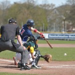 Sonntagsbaseball im Norden / Capitals reisen nach Paderborn