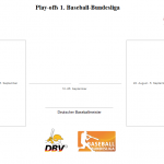 Livestreams und Liveticker in Play-offs und Play-downs