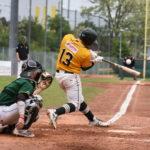 10-Run-Inning bringt Mainz auf Kurs gegen Hornets